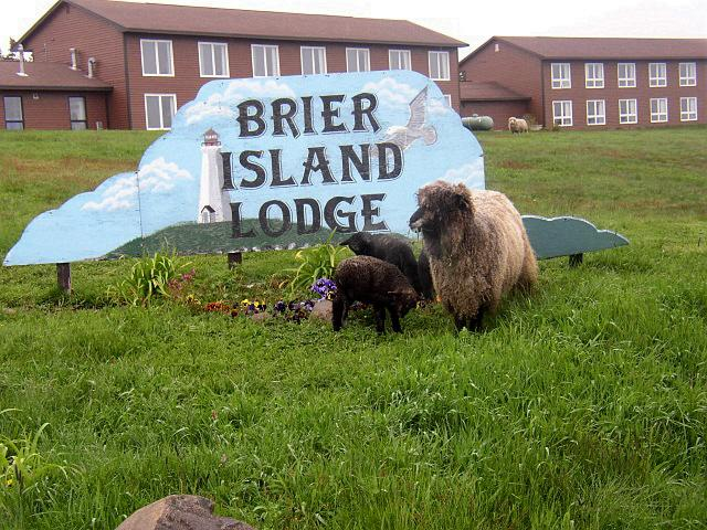Welcome to Brier Island Lodge