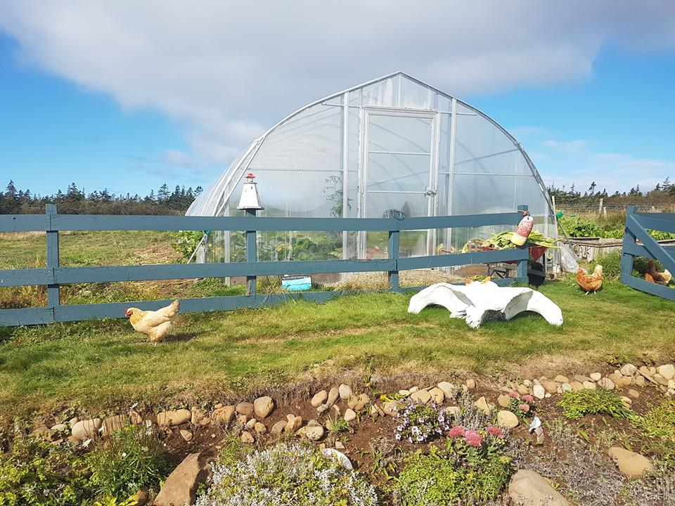 Brier Island Lodge food Greenhouse construction
